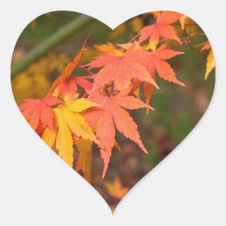 Los regalos en caída colorean productos múltiples pegatina en forma de corazón