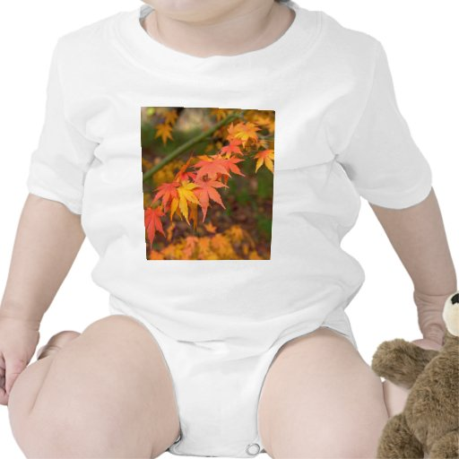 Los regalos en caída colorean productos múltiples camiseta