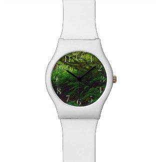 Los relojes de los Naturaleza-amantes de la selva