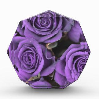 los rosas color de rosa púrpuras del ramo fechan