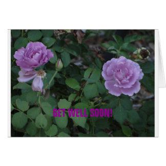 Los rosas de Lavendar/consiguen bien Tarjeta De Felicitación