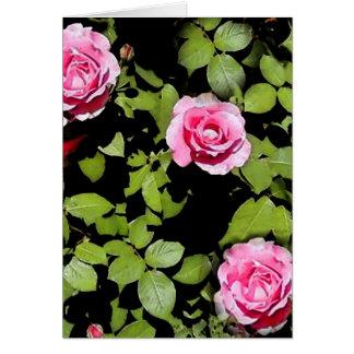 Los rosas de Momma, en blanco Tarjeta De Felicitación