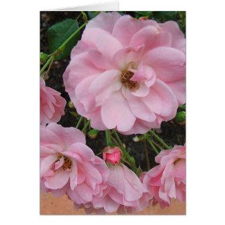 Los rosas de té le agradecen tarjeta de nota