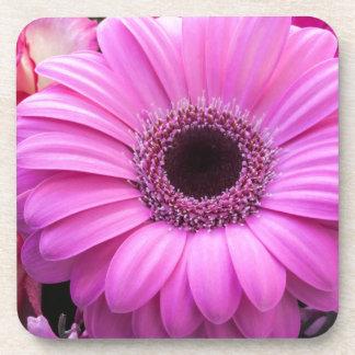 Los rosas del Gerbera de las flores personalizan l Posavaso