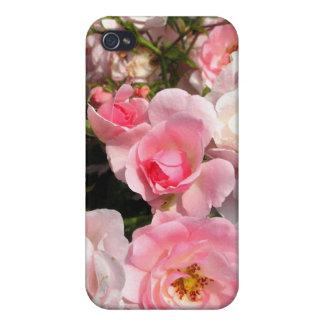 Los rosas motean la caja dura del teléfono de Shel iPhone 4 Carcasas