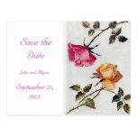 Los rosas rosados y amarillos del Victorian ahorra Tarjetas Postales