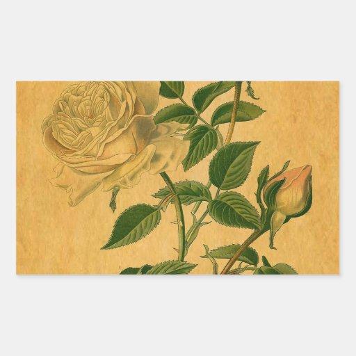 Los rosas son de oro rectangular pegatina
