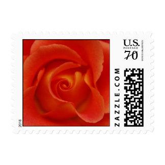 Los rosas son rojos en 65 centavos sello