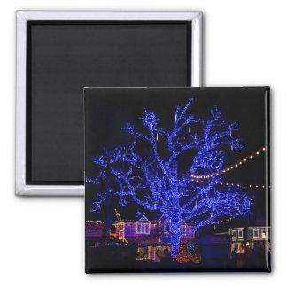 Los saludos azules del árbol imán cuadrado