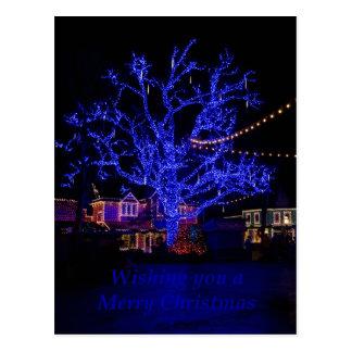 Los saludos azules del árbol tarjeta postal