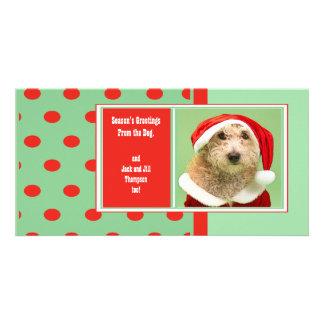 Los saludos de la estación del perro lindo tarjeta personal