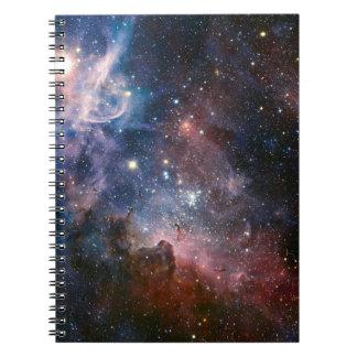 Los secretos ocultados de la nebulosa de Carina Libretas