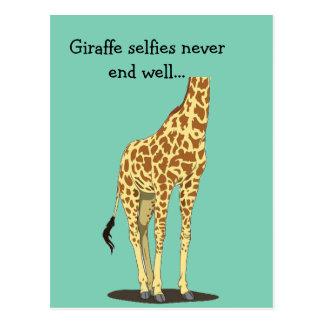 Los selfies de la jirafa nunca terminan bien… postal