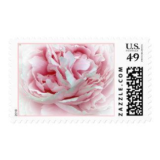 Los sellos de la flor del boda