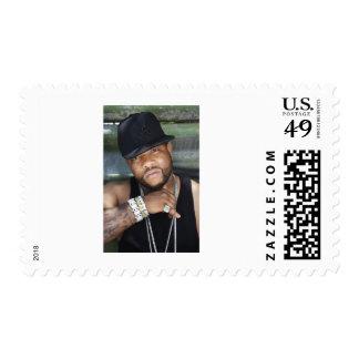 Los sellos de Zoe del gorila - presione la imagen