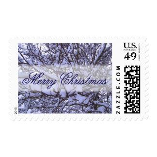 Los sellos - USPS - Nevado ramifican M-Navidad