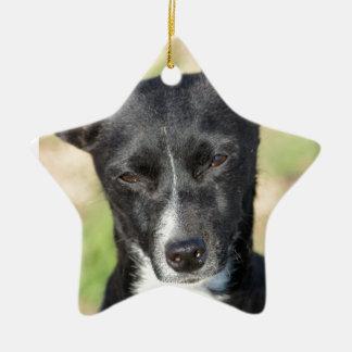 Los Squeakers de la esperanza pasada Adorno De Navidad