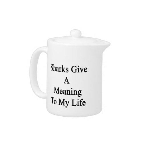 Los tiburones dan un significado a mi vida