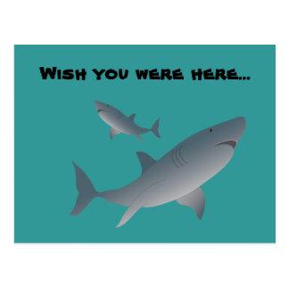 Los tiburones, desean que usted estuviera aquí… tarjetas postales