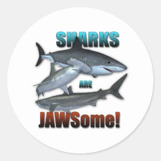 ¡Los tiburones son JAWSome! Pegatina Redonda