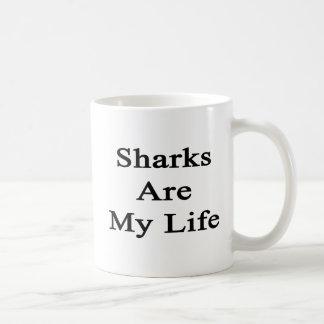 Los tiburones son mi vida taza