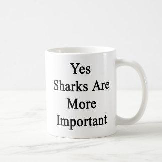 Los tiburones son sí más importantes taza