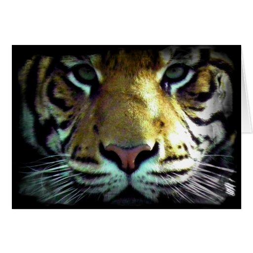Los tigres observan tarjeta de felicitación