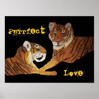 Los tigres perfeccionan amor póster