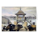 Los toros en el corral de la plaza felicitaciones
