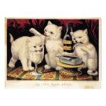 Los tres gatitos codiciosos en el banquete Ives Fotografía