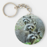 Los tres mapaches llavero