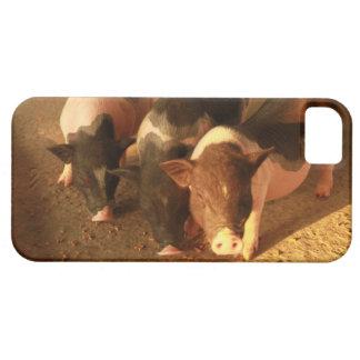 Los tres pequeños cerdos iPhone 5 Case-Mate coberturas
