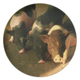 Los tres pequeños cerdos plato