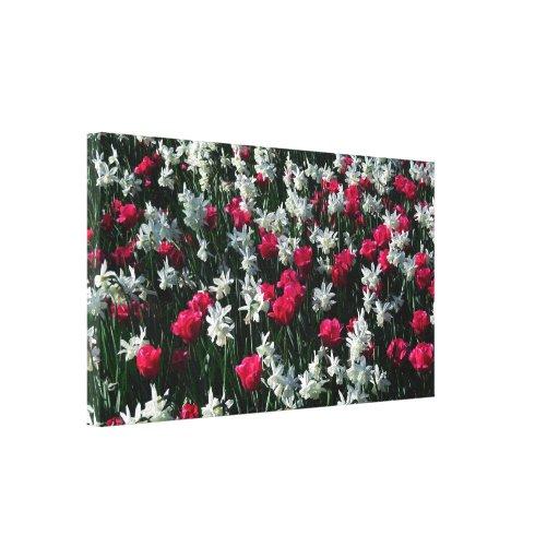 Los tulipanes 16 estiraron la impresión de la lona impresión en lienzo estirada