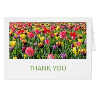 Los tulipanes le agradecen las tarjetas