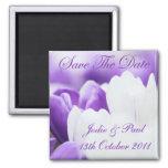Los tulipanes púrpuras y blancos - ahorre la fecha iman para frigorífico