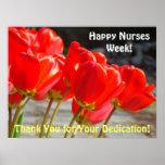 Los tulipanes rojos de las enfermeras de los poste