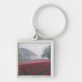 Los tulipanes rojos y rosados saludan el día en un llavero personalizado