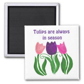 Los tulipanes son siempre de temporada imán cuadrado