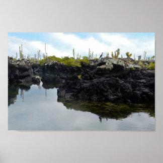 Los Tuneles en las islas de las Islas Galápagos Póster