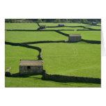 Los valles de Yorkshire - graneros y paredes Felicitacion