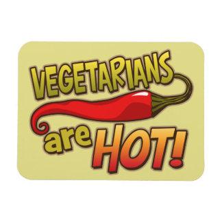Los vegetarianos son imán divertido caliente
