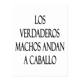 Los Verdaderos Machos Andan A Caballo Postcard