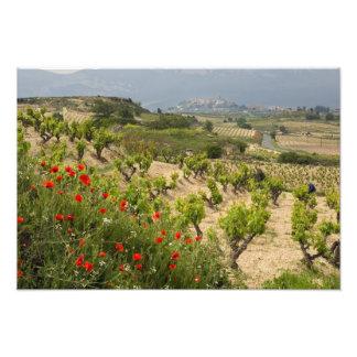 Los viñedos acercan a Laguardia, capital de La Rio Fotografias