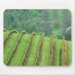 Los viñedos de la uva acercan a Newberg Oregon Alfombrilla De Ratón