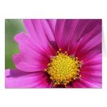 Los Wildflowers 2 de Jen Felicitación
