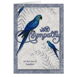Loss of a Bird - Hyancinth Macaw Pet Sympathy Card