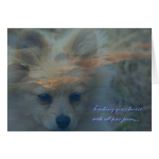 Loss of a dog. Loss of a pet. Condolences Sympathy Card