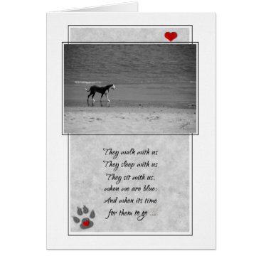Beach Themed Loss of a Dog Pet Sympathy Beach Theme Card