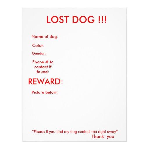 LOST DOG!!! FULL COLOR FLYER
